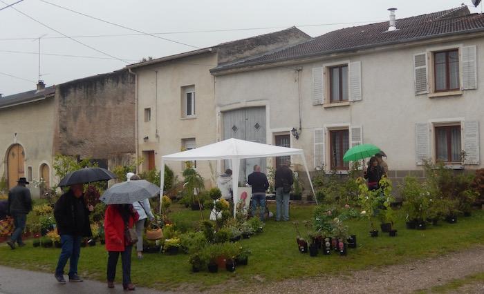 Marché aux Pousses Laronxe