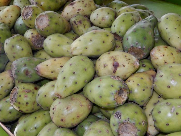 Tunas, fruit de cactus