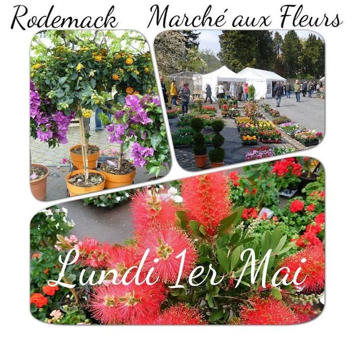 Marché aux Fleurs - Rodemack