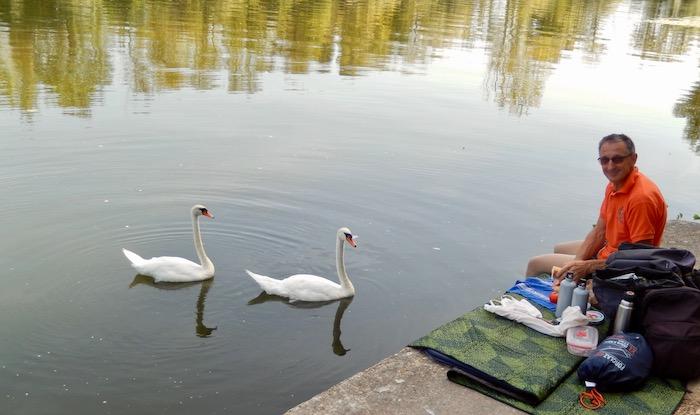 Pique-nique au bord de l'Yonne